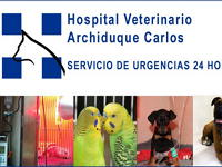 Hospital Veterinario Archiduque Carlos