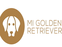 Mi Golden Retriever