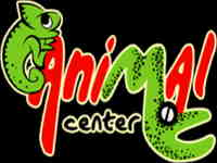 Animal Center, reptiles y anfibios
